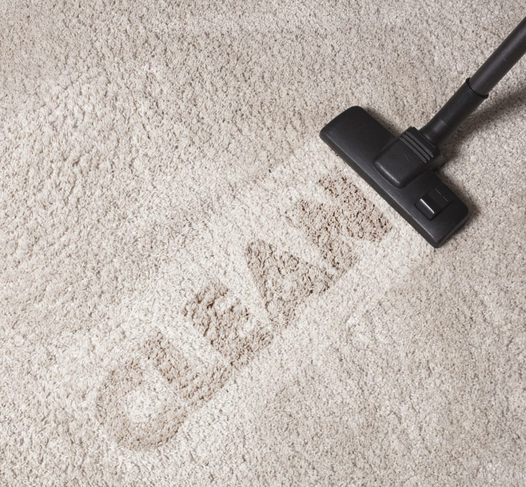 dust cleaning with vacuum cleaner with clean text on carpet